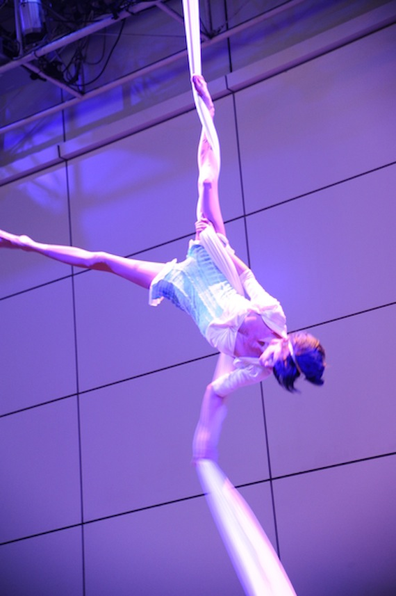 Aerialist Robin Lynch (Photo: Guest of a Guest Photography)