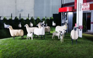 The Lalane sheep exhibit at the Getty (Credit: Shvo)